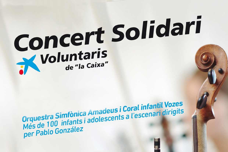 diseño-posters-voluntaris-la-caixa