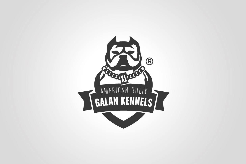 Diseño de logotipos American Bully Barcelona